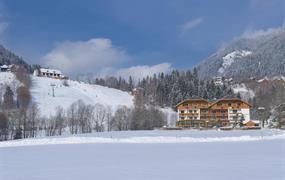Hotel Almrausch Bad Kleinkircheim
