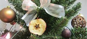 Vánoce v pohodě - Veselí nad Lužnicí, hotel Lucia