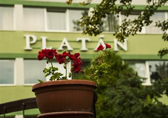 Harkány - hotel Platán*** 4dny/3noci