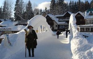 zimní pobyty v hotelu Lesana***