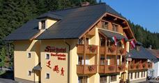 Sporthotel Dachstein West – Annaberg léto, karta