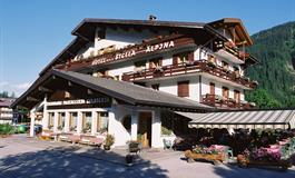 Hotel Stella Alpina