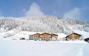 Apartmány Alpin