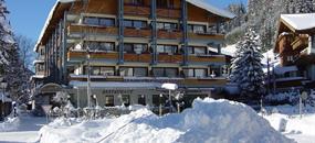 Hotel Hanneshof s bazénem – Filzmoos