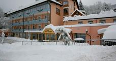 Hotel Piancastello 3* - Andalo