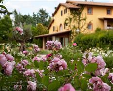 Hotel Graden Resort s bazénem PIG - Assisi ***