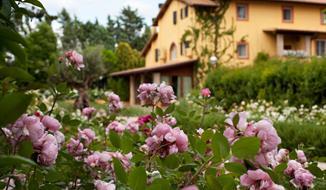 Hotel Graden Resort s bazénem PIG - Assisi