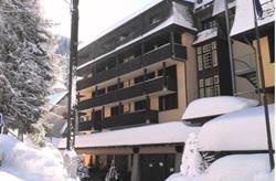 Rezidence Des Alpes 2 - Madonna di Campiglio ***