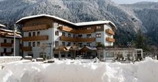 Hotel Ariston - Molveno