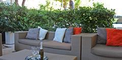 Hotel New Primula- Rimini