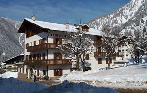 Hotel Stella Alpina - Bellamonte