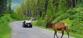 Národní parky západu U.S.A.